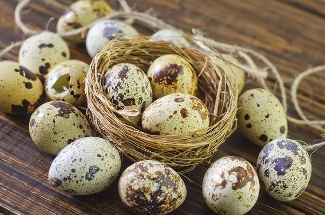 Kỳ lạ: Trứng cút cũng giúp tăng cường sinh lý nam rất tốt