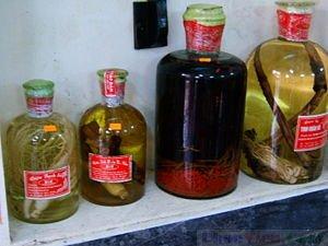 Rượu Tiên mao: Ôn bổ tỳ thận, cường gân cốt, trừ hàn thấp