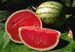 Ăn dưa hấu thường xuyên để cải thiện chức năng sinh lý nam