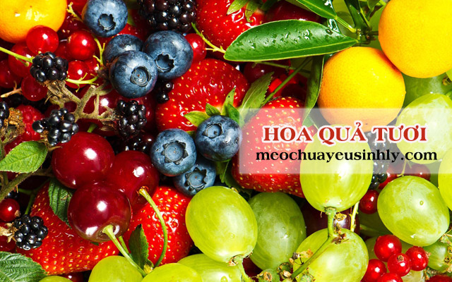 Ăn nhiều hoa quả tươi giúp điều trị chứngtiểu đêm nhiều lần do thận yếu